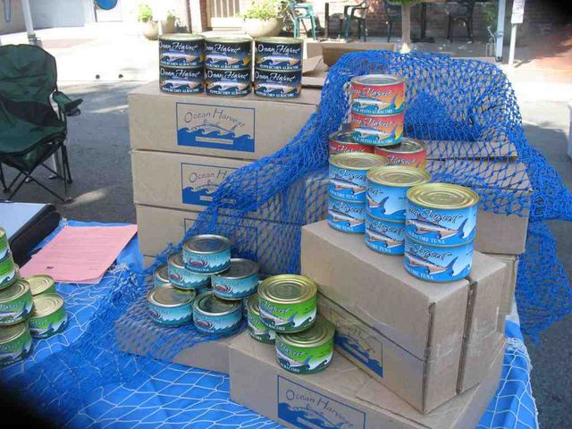 Canned Tuna on Display at Farmers Market