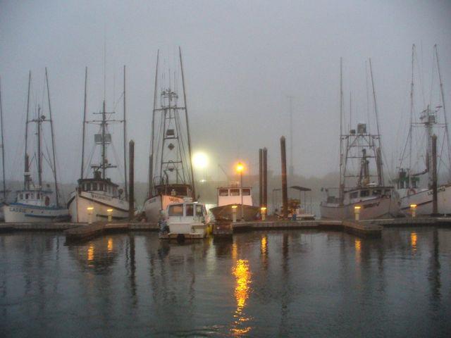 Harbor at foggy dawn.