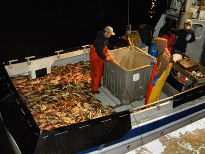 http://www.theoceanharvest.com/sites/default/files/images/crabbing%202009%20001.400x.JPG